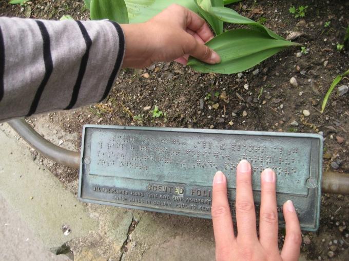 Foto de planta con señalización en braille